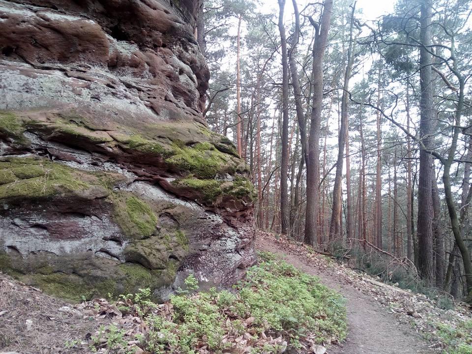 Dimbacher Buntsandstein-Höhenweg