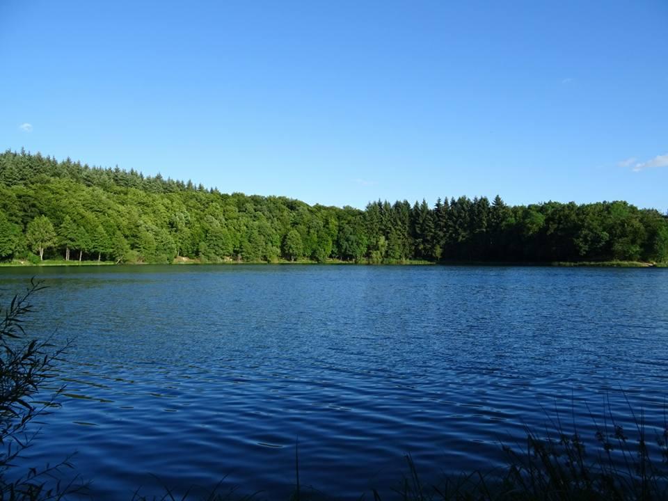 Määrchen-Naturwaldpfad am Holzmaar