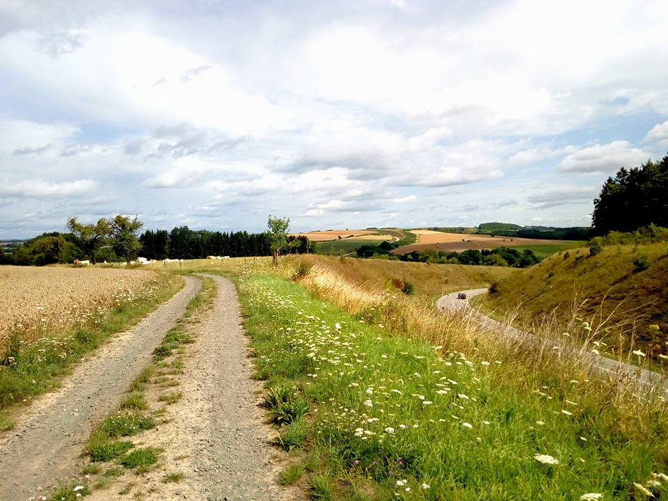 Paradiesgartenweg