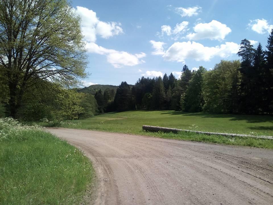 Lemberger-Rothenberg-Weg