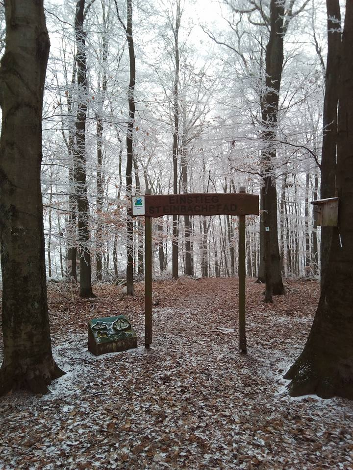Steinbachpfad