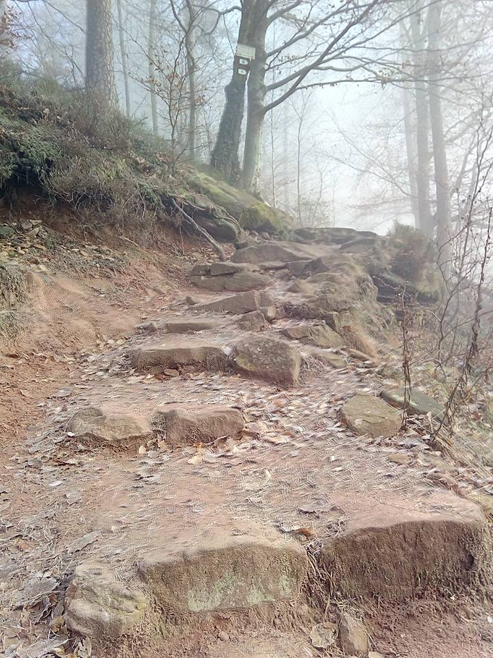 Vier-Burgen-Weg