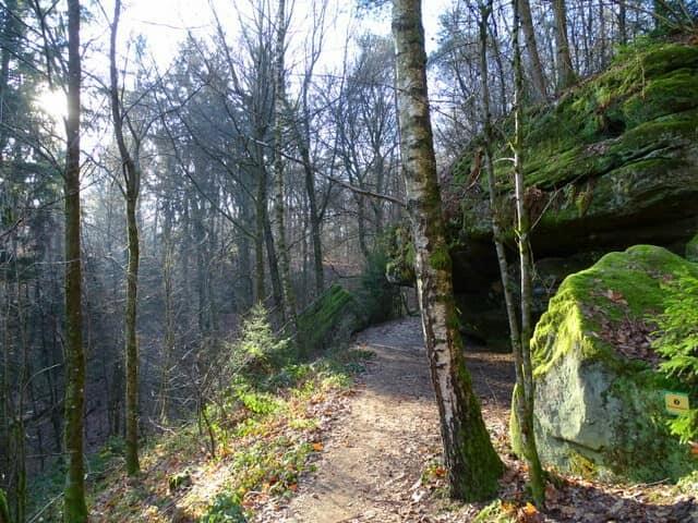 Felsenpfad Kirkel