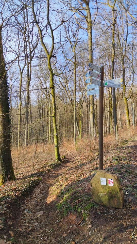 Felsenwaldtour