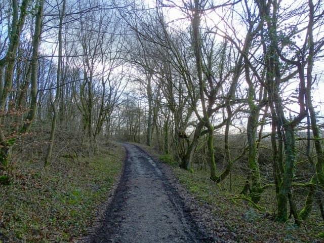 Kneipprundwanderweg Erfweiler-Ehlingen