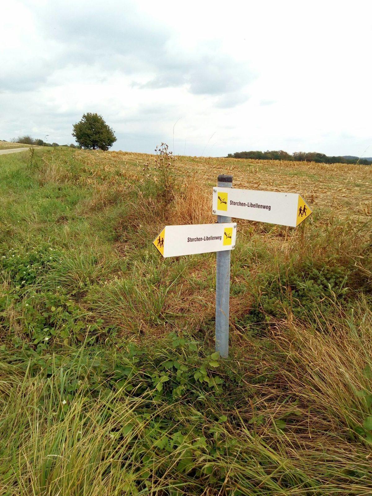 Storchen-Libellen-Weg