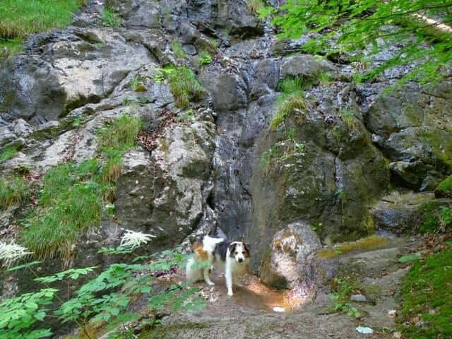Lechschleife Königsschlösser-Runde, Füssen (Lechschleife Nr. 8)