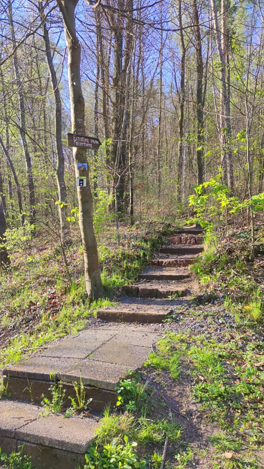 Felsenweg Gossersweiler-Stein