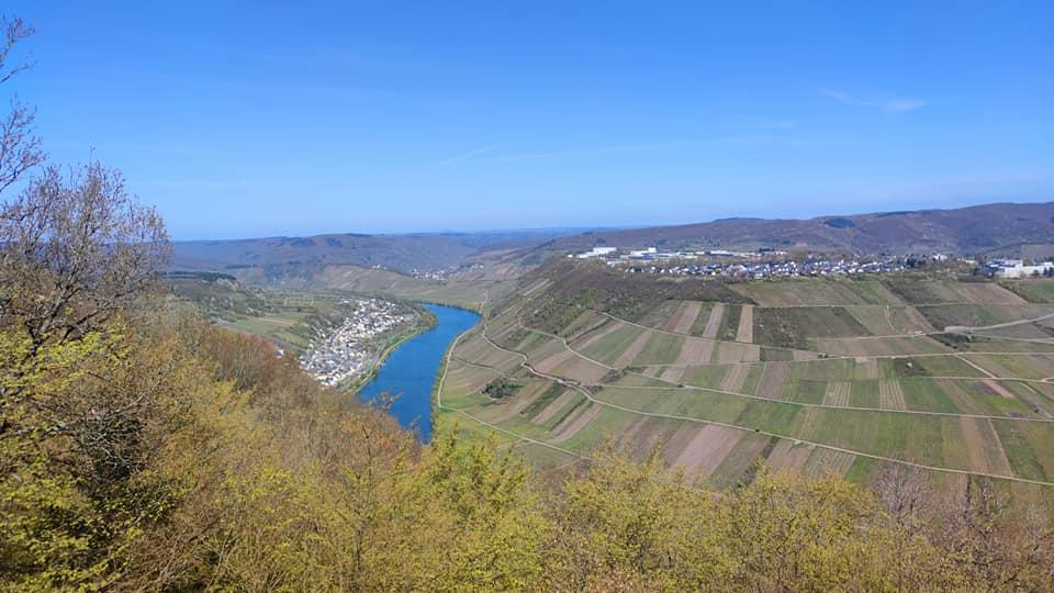Moselsteig Seitensprung Briedeler Schweiz