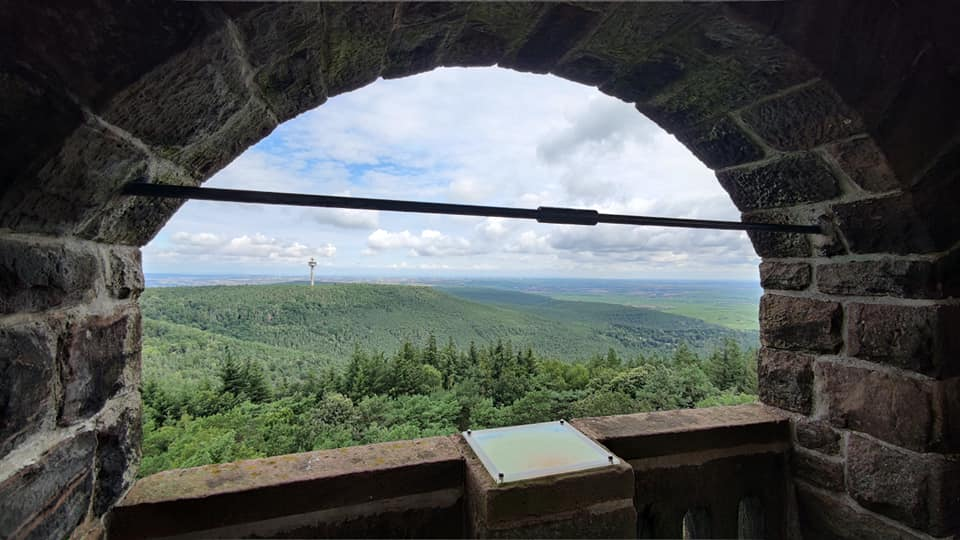 Pfalz Pfade Weilach – Rundweg Bismarckturm Heidenfels